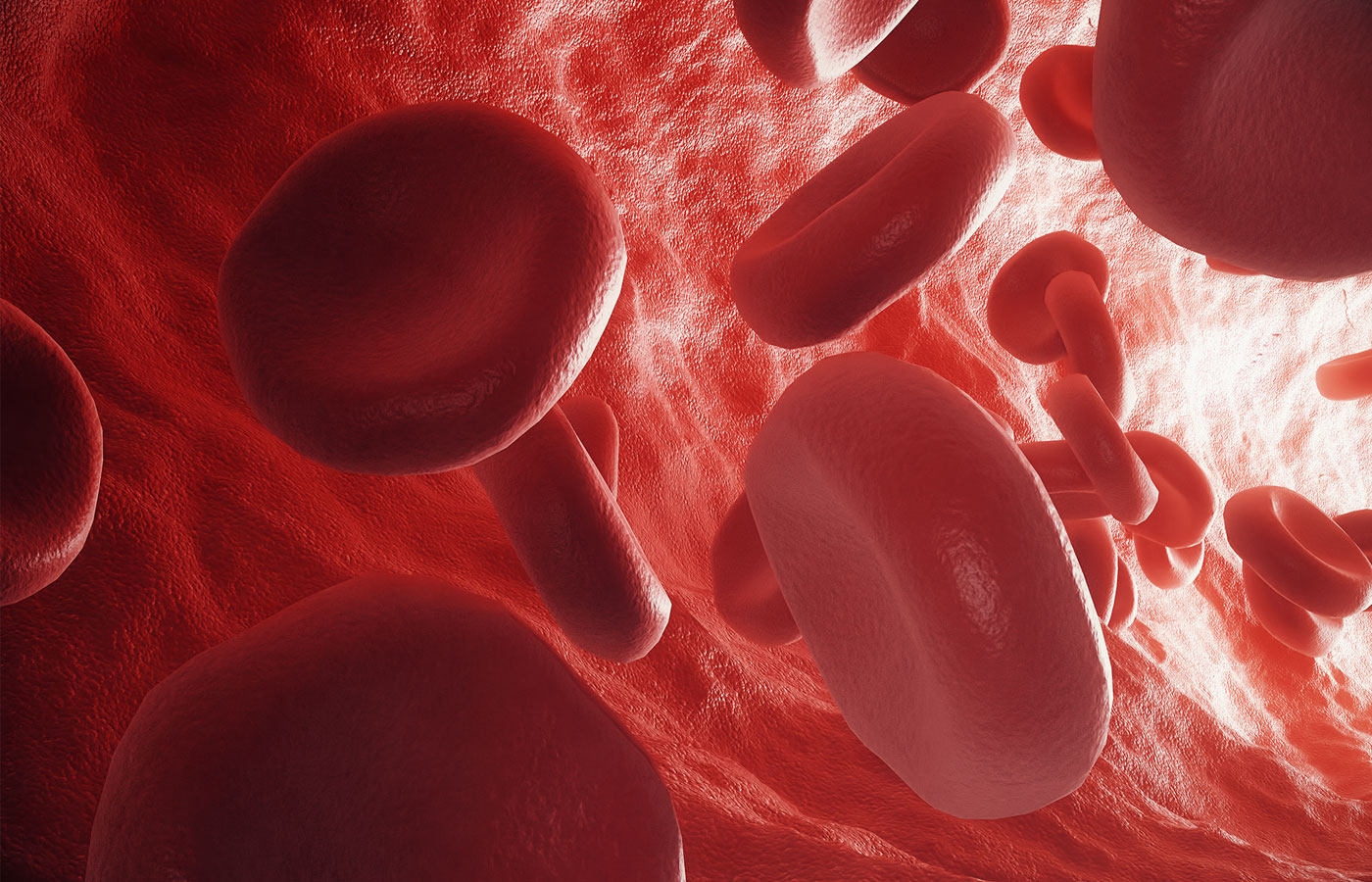 3d rendering red blood cells